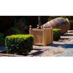 Roble Planter