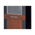 Kolekcja Vievien witryna 1 drzwiowa P (oświetlenie opcjonalne)