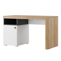 Riva 40 One door desk with bookshelfs