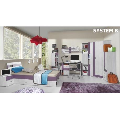 Next System (B)